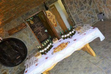 Green gastro & wine